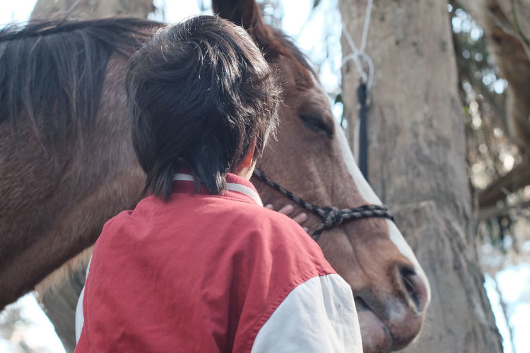 Rear View Of Boy With Horse Standing At Farm