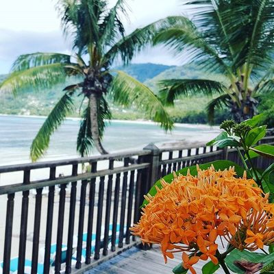 seychelles BeauVallon French paradise Paradis Sun Lille Holidays Vacances Travel Bluesea Mahé Praslin Ladigue Beach Instagood Instagram Insta