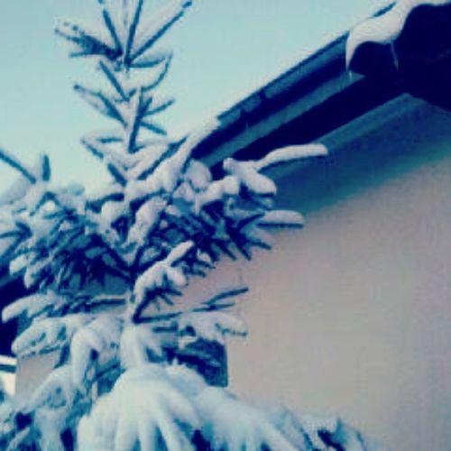 Ale Sniegu Nasypało Ferie Zaczynaja SIE  Mega