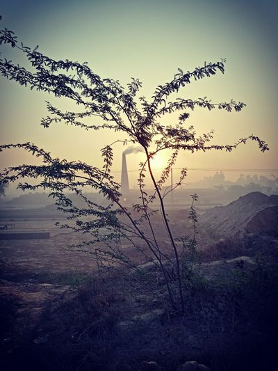Chimney Smoke rising Sunrise Feelingsexyandfree Grateful😍