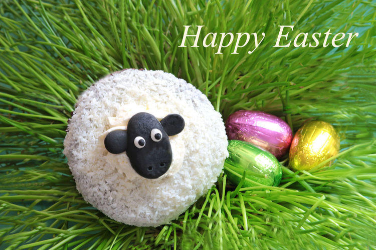 Happy Easter, with cute Easter lamb Chocolate Easter Funny Grass Green Color Holiday Holidays Blackandwhite Cheerful Chives Close-up Coconut Flakes Cute Day Easter Cards Easter Lamb Eggs Grass Green Color Happy Easter Headshot Indoors  Muffin No People Top View