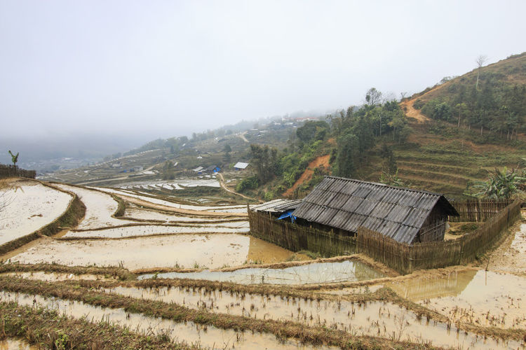 View Of House Amongst Rice Terraces In Sapa, Vietnam