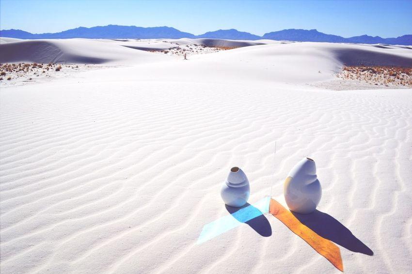 Desert Sid And Chad