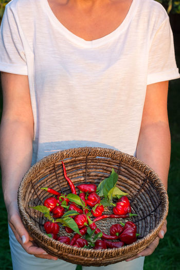 Midsection of woman holding red basket