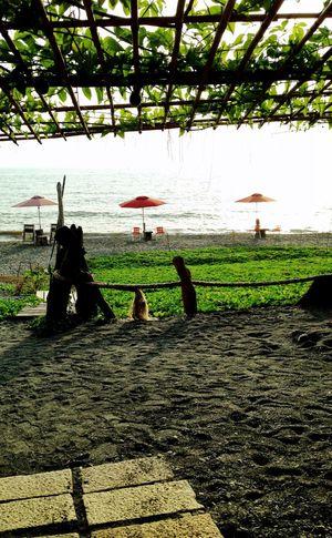 Beach Sea View