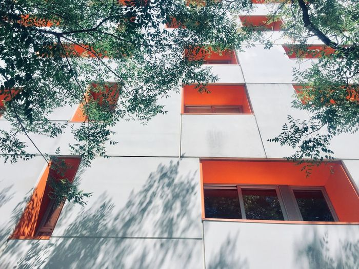Architecture Building Exterior Tree Built Structure Plant Building Nature No People Day Low Angle View Window Residential District Outdoors House Growth Orange Color Sky The Architect - 2019 EyeEm Awards
