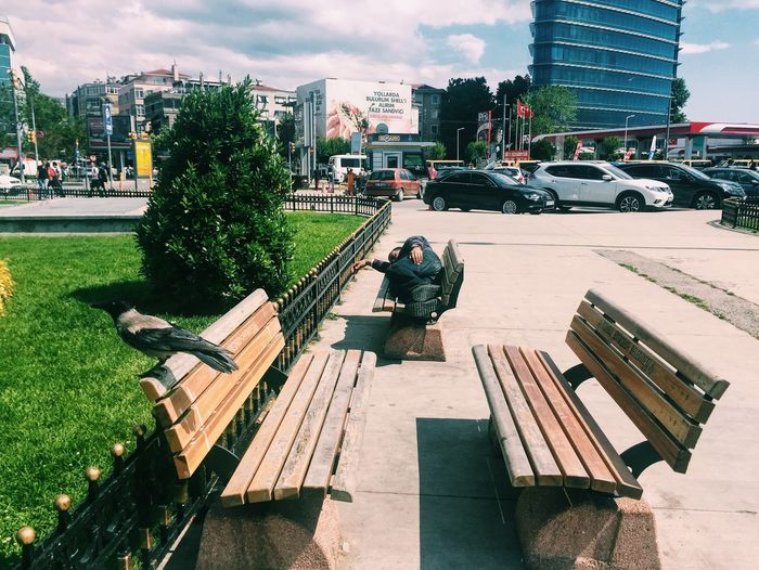 Man Sleeping On Bench By City Street