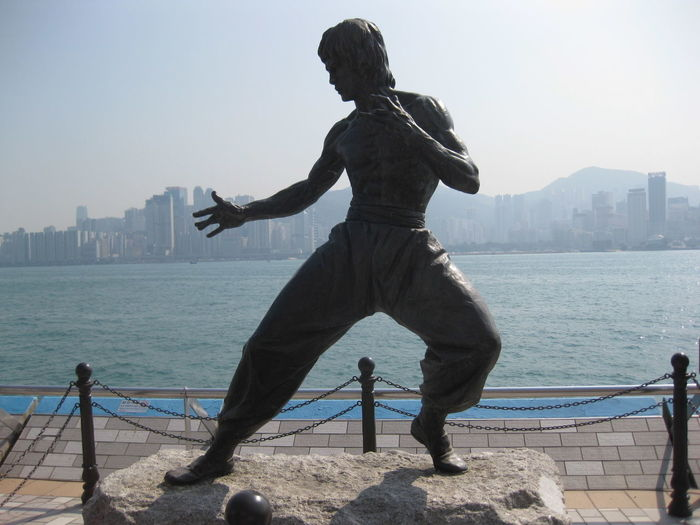 Bruce Lee Bruce Lee Statue Grey Hong Kong Master Poise  Ready Statue The Master Water