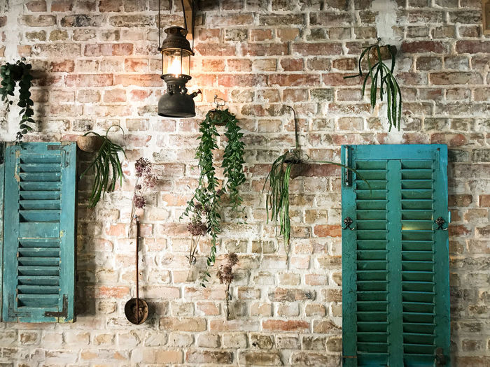 Potted plant against brick wall of old building