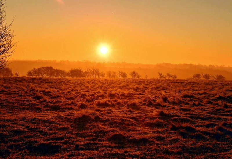 Sunrise in a field in Northamptonshire with a frost on the grass Sunrise Beauty In Nature Nature Outdoors Landscape Sun Sunshine Sky Frost Morning Morning Sunshine