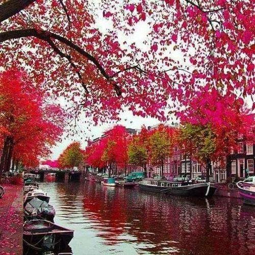 Beautiful , Brugge. Belgium. Shades Of Winter