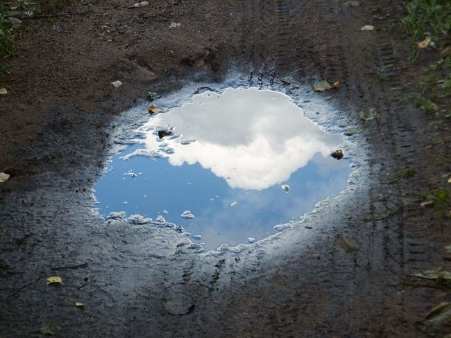 Another dimension Anotherdimension Cloud - Sky Puddle Summer Nature Forest Nature Photography Water Reflection Close-up