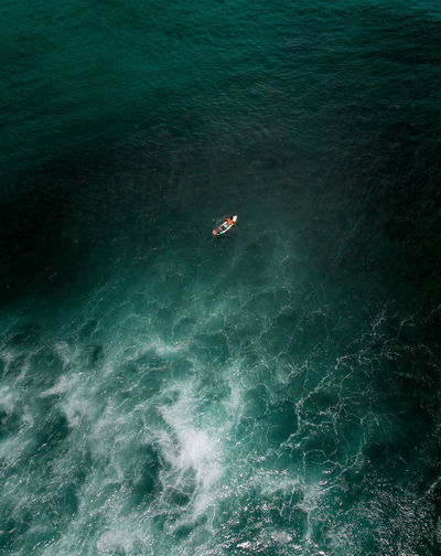 High angle view of person swimming in sea. bird of eye