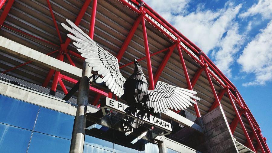 Sport Lisboa e Benfica Stadium Eagle Sport Lisboa E Benfica Eagle E Pluribus Unum Statue Stadium Of Light Estádio Da Luz Architecture