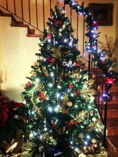 ❤️❤️❤️❤️ Mychristmastree Mytree Christmas Tree Christmas Lights Christmastime Christmas Decorations