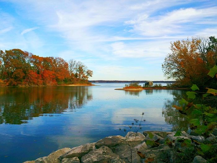 Inlet on the Chesapeake Bay. First Eyeem Photo Water Nature Tranquil Scene Trees Shore Fall Colors No People