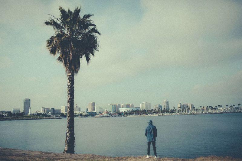 Long Beach California Cityscape Skyline Unrecognizable Person Palm Tree Ocean View Ocean Water Musician