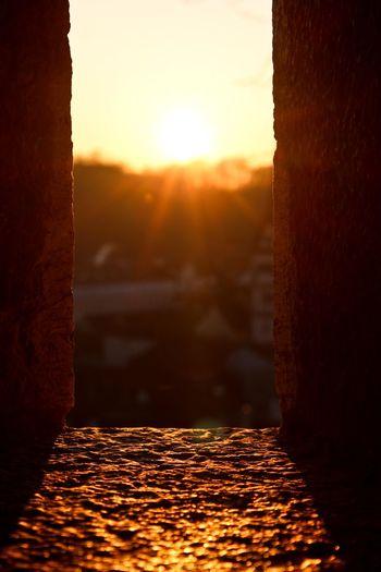View of sun shining through trees during sunset