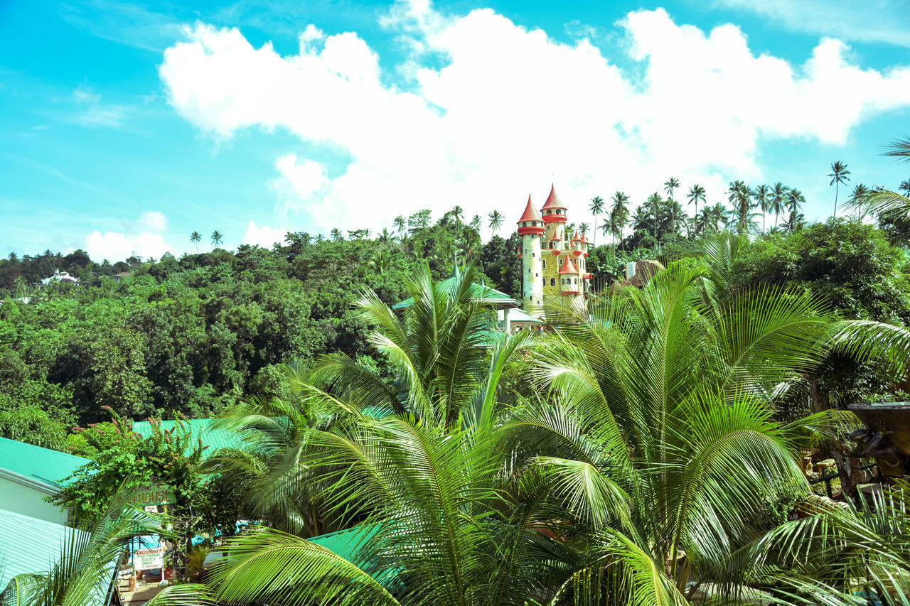tree, plant, built structure, sky, architecture, tropical climate, building exterior, cloud - sky, nature, growth, palm tree, building, green color, day, beauty in nature, religion, no people, land, outdoors, place of worship