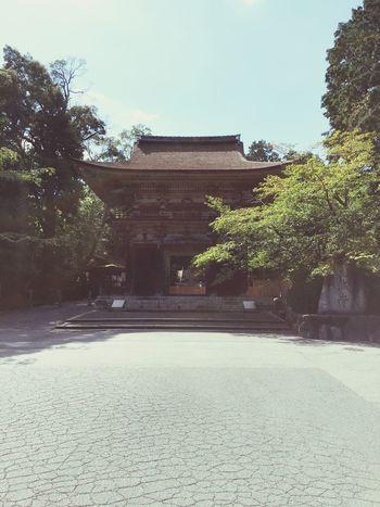 Temple Architecture Temple - Building Temple Japanese Temple Architecture Built Structure Tree History No People Travel Destinations Building Exterior