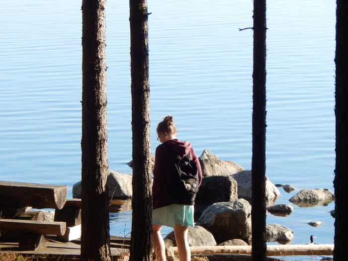 Rear view of woman standing on wooden post by sea