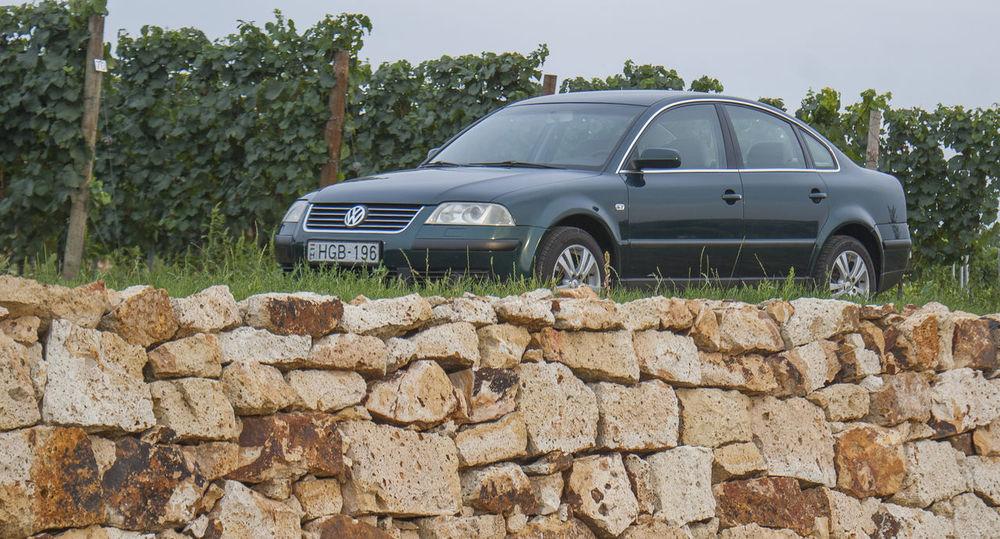 Car Day Nature Outdoors Passat Stonewall Transportation Vineyard Volkswagen Volkswagen Passat