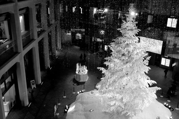 KITTEのツリー KITTE クリスマスツリー