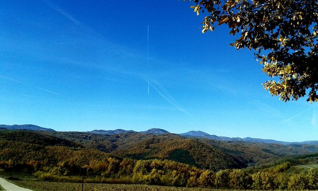 countryside Mountain Blue Nature Mountain Range Beauty In Nature Day Tree