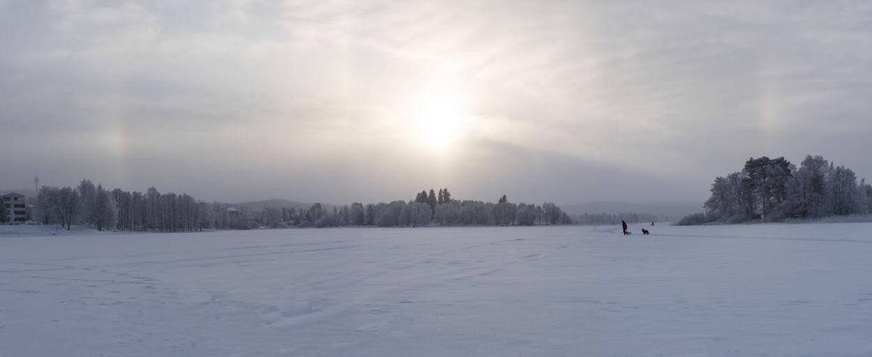 Snow Winter Halo
