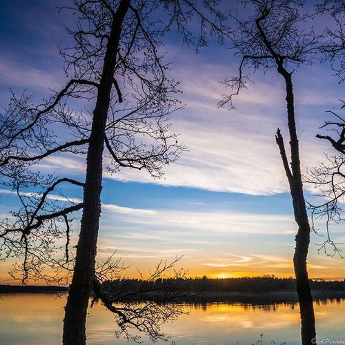 Today's last sun rays. Fotocatchersmember Ig_finland Main_vision Worldbestgram Finland_bestsunset Excellent_nature Bestcaptureglobal Insta_sky_reflection Ig_myshot Ig_dynamic Loves_skyandsunset Exclusive_water Nature_brilliance 9vaga_skyandviews9 Bestnatureshots Exclusive_reflection Reflecting_perfection My_daily_sun Sky_perfection Photomagicworld Fav_skies Heart_imprint Fotofanatics_sky_ Jj_skylove Global_nature_sunsets fiftyshades_of_twilight ig_countryside nature_wizards 9vaga_world9 tree_brilliance