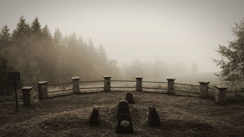 Fog Weather Railing Tree Outdoors No People Cold Temperature Day Sky Nature Canonphotography Poland 2017 WWI Grave Grave War Grave World War 1 Limanowa History Through The Lens  Bad Weather