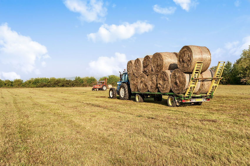 Agricultural scene. Tractor collecting hay bales in field and loading on farm wagon. Haystack Tractor Agricultural Machinery Agriculture Bales Cloud - Sky Day Farm Wagon Field Harvest Hay Hay Bales Nature Outdoors Rural Scene Sky Transportation