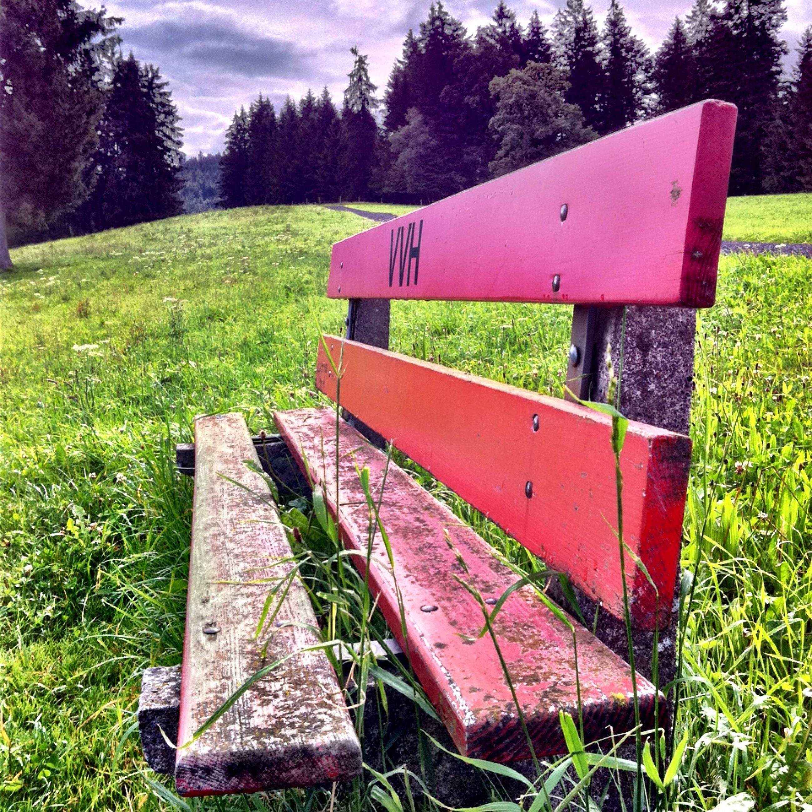 grass, grassy, field, bench, tree, green color, empty, tranquility, landscape, absence, park - man made space, nature, red, growth, tranquil scene, grassland, wood - material, sky, park bench, lawn