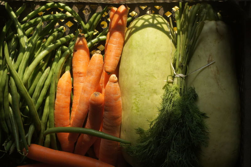 Carrots Close-up Dill Food Food And Drink Freshness Green Bean Green Color Healthy Eating Lights And Shadows Lights On Vegetables Shadows & Lights Shadows On Vegetables Squash String Beans Vegetable Vegetables Vegetables & Fruits Vegetarian Vegetarian Food Vegetarian Lifestyle