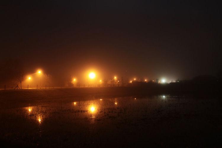Reflection of illuminated trees in puddle