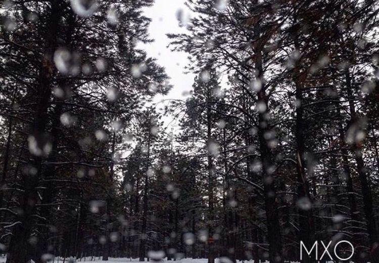 I'm only honest when it rains. Rain Snow Depression Xo Mxo