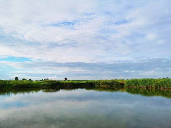 serenity Reflections In The Water Reflection Surface Water Sukhothai Evening Water Lake Bird Tree Reflection Blue Sky Landscape Cloud - Sky Calm Tranquility Tranquil Scene Countryside Horizon Over Water Wetland Reed - Grass Family