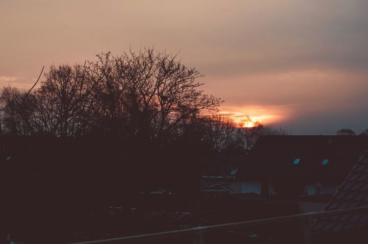 Morning lights Sunrise_sunsets_aroundworld Sunrise Eye4photography  EyeEmNewHere First Eyeem Photo Sunset Tree Silhouette Dusk No People Sky Nature Built Structure Outdoors Beauty In Nature Scenics Architecture Building Exterior Illuminated City Day