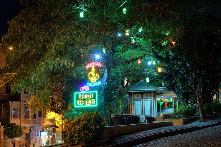 Oriental Night Street Night City Light Green Tree Travel Istanbul Outdoors Turkey No People TR792_ISTANBUL_AK TR792_TURKEY_AK