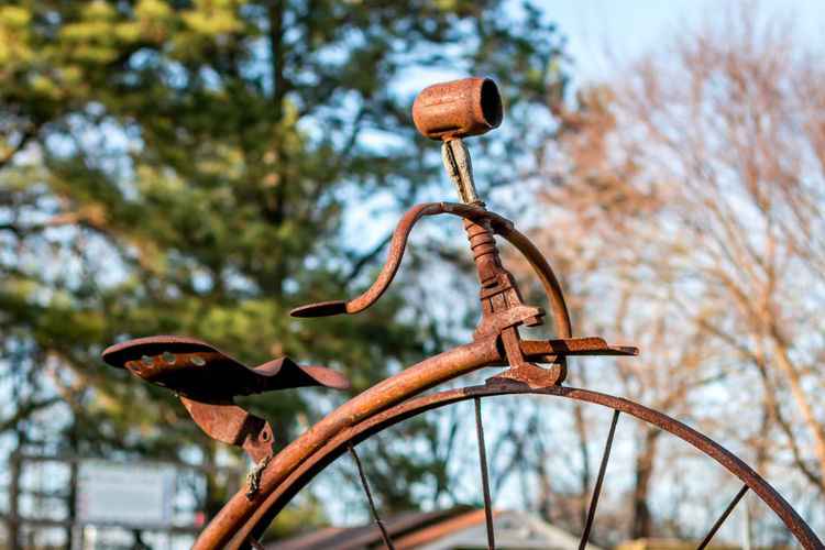 Old school bicycle. Bike Close-up Day Focus On Foreground Handlebar Old Bicycle Outdoors Tree