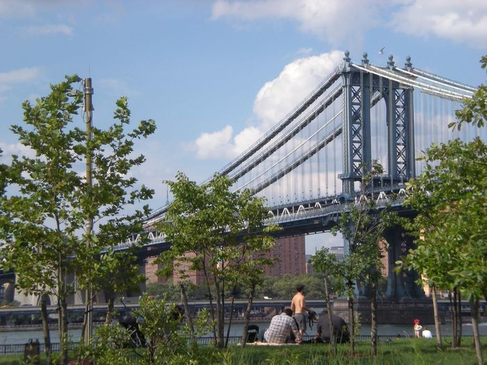 Williamsburg Bridge Manhattan Brooklyn New York Bridge Sky Architecture Built Structure Cloud - Sky Nature Building Exterior Plant Tree People Group Of People Day Adult Women Smoke - Physical Structure Real People Lifestyles Connection Leisure Activity Men Travel Destinations
