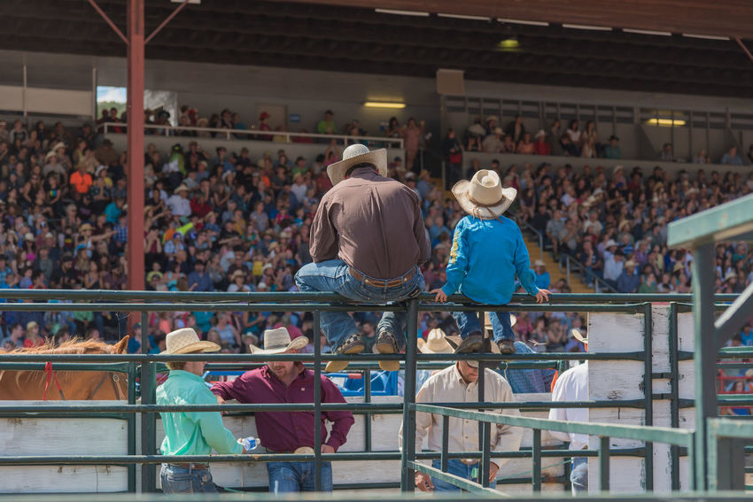 Williams Lake, British Columbia/Canada - July 2, 2016: man and boy sit on fence with a group of cowboys, watching the action at the 90th Williams Lake Stampede, an internationally famous event. 90th Williams Lake Stampede Behind The Scenes British Columbia, Canada Canadian Professional Rodeo Association Cowboys Spectators Travel Williams Lake Stampede Annual Event Audience Boy Child Chutes Competition Country Western Crowd Editorial  Fence Men Professional Rodeo Sport Stampede Grounds Stands Summer Tourism