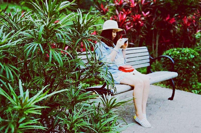 Secret Garden Inspiration Lake Disneyland Hong Kong Summer Picnic 35mm Film Canon