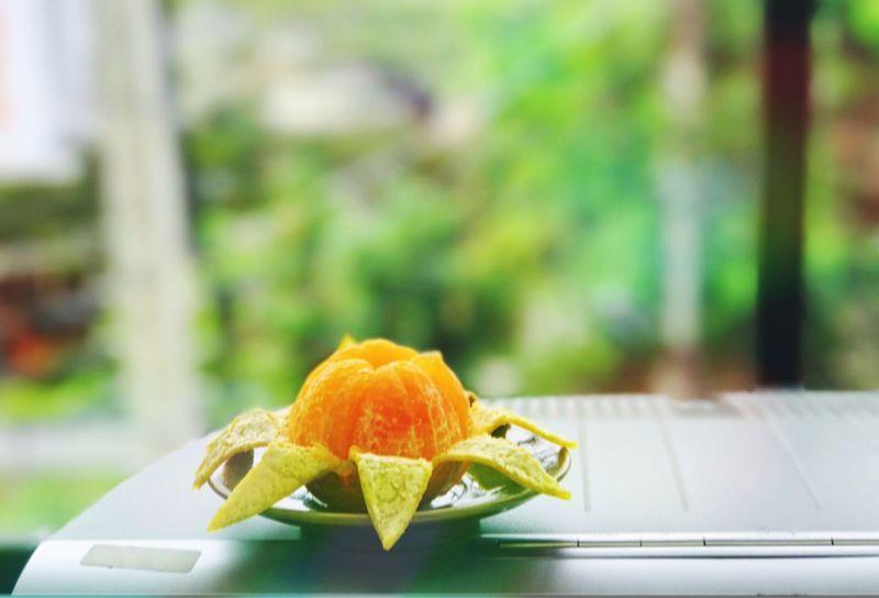 ส้มสด EyeEm Fruit Collection Good For Your Health Orange Ready-to-eat Refreshment Vitamin C Eyeem Fruits Fruitporn Fruits Healthy Eating Freshness EyeEm Best Shots - Nature Dessert EyeEm Best Shots Minimalist