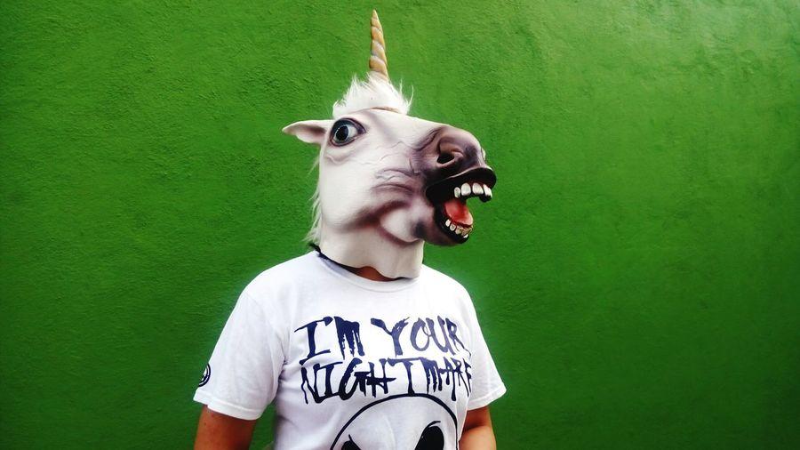 Man wearing unicorn mask against green wall