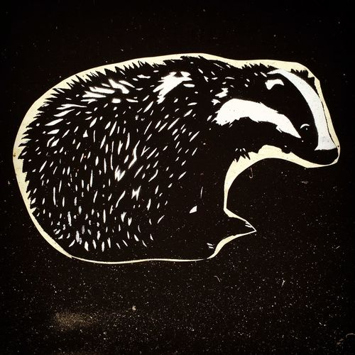 Abstract Animal Body Part Animal Head  Animal Markings Badger Badger In Space Black Background Black Color Close-up Natural Pattern Nature Outdoors Portrait Space Street Art Street Art/Graffiti Street Arts