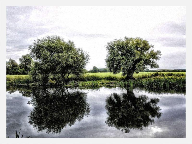 EyeEm Best Shots - HDR EyeEm Best Shots TreePorn EyeEm Best Shots - Landscape