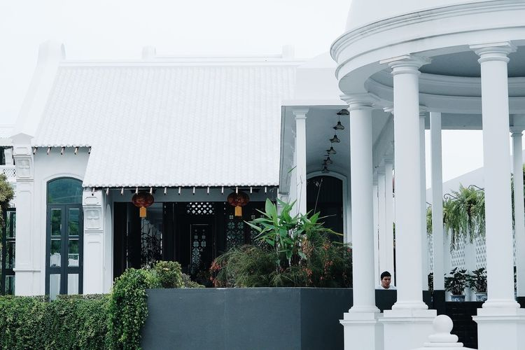 Architectural Column Architecture Building Building Exterior Built Structure City Courtyard  Day Door Entrance Growth House Nature No People Outdoors Plant Potted Plant Residential District Sky Tree White Color