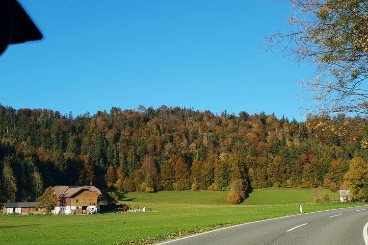 Landscape in Austria near Hintersee with hill and house, from a driving car and under blue sky ... EyeEm Selects Tree Blue Clear Sky Rural Scene Sky Architecture Building Exterior Built Structure Green Color