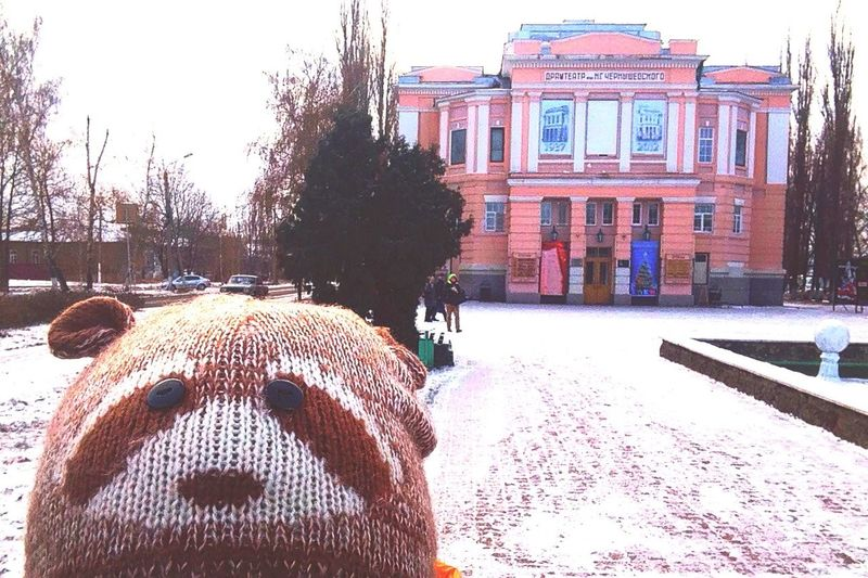Little Raccoon Borisoglebsk Russia Theater Name Chernyshevsky